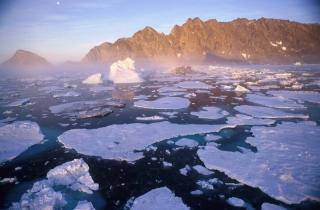 Réchauffement climatique banquise arctique
