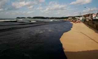 Marée noire en Corée