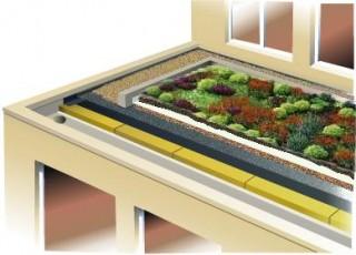 Composition d'une toiture végétalisée