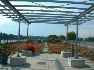 Terrasse d'agrément végétale