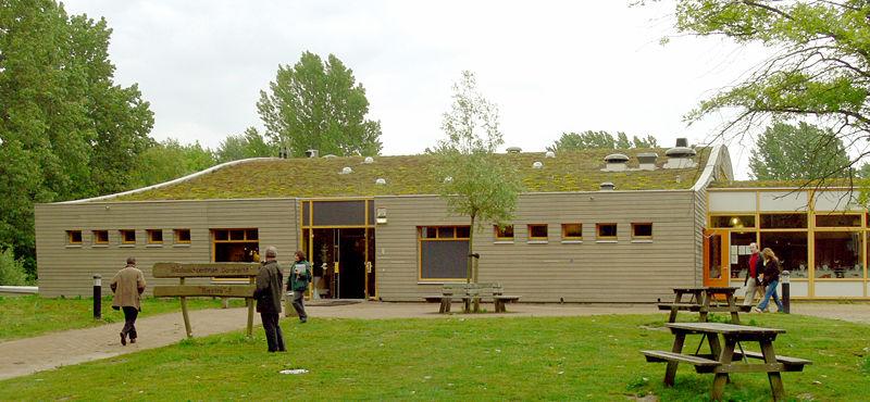 La toiture v g talis e coloqique et respectueuse de l 39 environnement - Toiture vegetalisee extensive ...